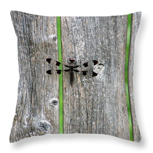 Dragonfly Throw Pillow featuring the photograph Renewal by Elizabeth Hart