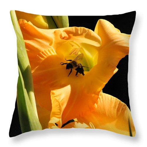 Bumblebee Throw Pillow featuring the photograph Resting In Petal Shade by Michelle DiGuardi