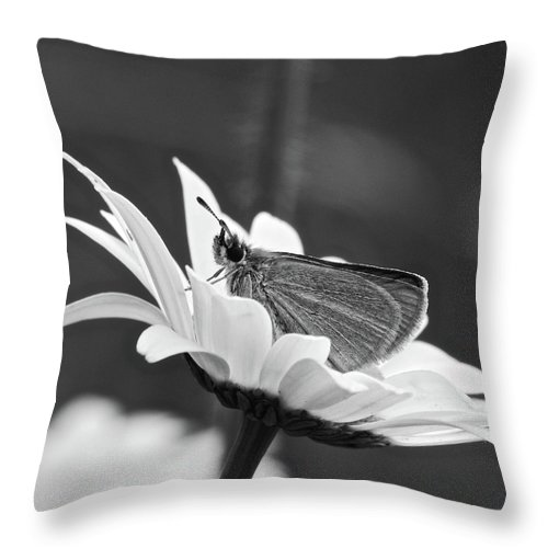 B&w Throw Pillow featuring the photograph Resting by Michael Peychich