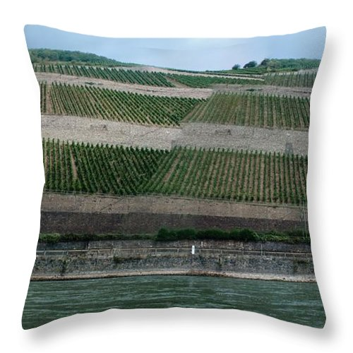 Rhine Throw Pillow featuring the photograph Rhine Valley Vineyards Panorama by Thomas Marchessault
