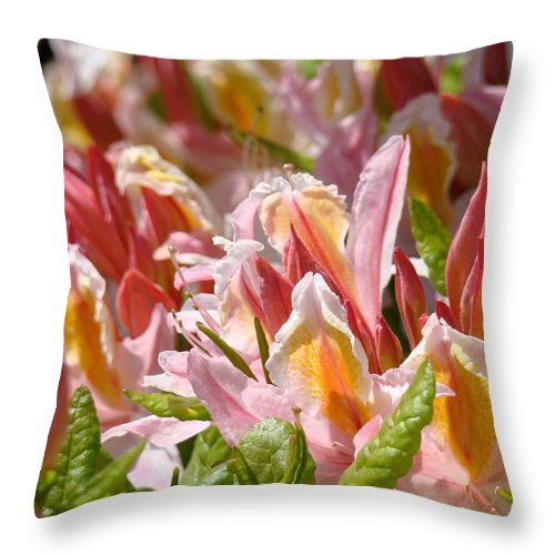 Rhodie Throw Pillow featuring the photograph Rhododendrons Floral Art Prints Canvas Pink Orange Rhodies Baslee Troutman by Baslee Troutman