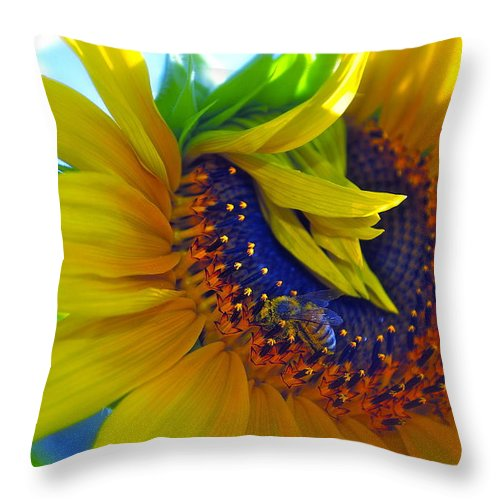 Sunflower Throw Pillow featuring the photograph Rich In Pollen by Gwyn Newcombe