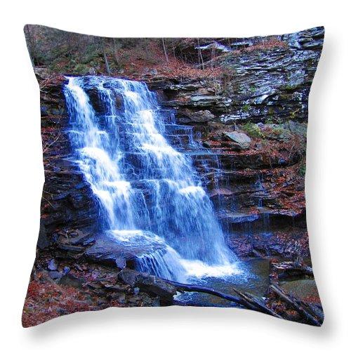 Ricketts Glen Throw Pillow featuring the photograph Ricketts Glen Waterfall 3941 by David Dehner