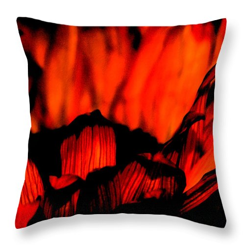 Flower Throw Pillow featuring the photograph Ring Of Fire by Linda Shafer