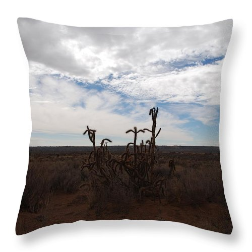 New Mexico Throw Pillow featuring the photograph Rio Rancho New Mexico by Rob Hans