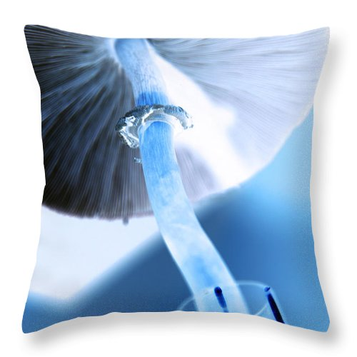 modern Mushroom Throw Pillow featuring the photograph Rise by Amanda Barcon