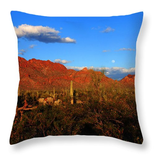Rising Moon Throw Pillow featuring the photograph Rising Moon In Arizona by Susanne Van Hulst