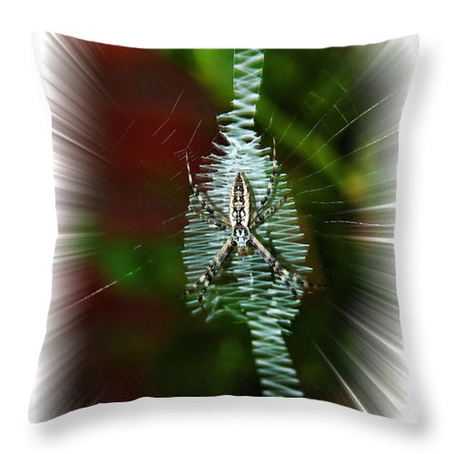 Spider Throw Pillow featuring the photograph 'ritin' Spider by Gary Adkins