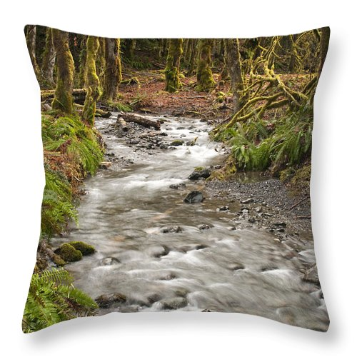 Forest Throw Pillow featuring the photograph River Forest by Chad Davis