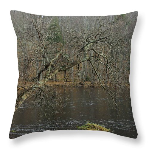 Landscape Throw Pillow featuring the photograph River In The Spring by Alice Markham