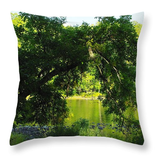 River Throw Pillow featuring the photograph River In The Summer by Alice Markham
