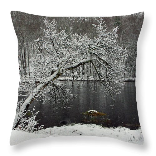 Winter Throw Pillow featuring the photograph River In The Winter by Alice Markham