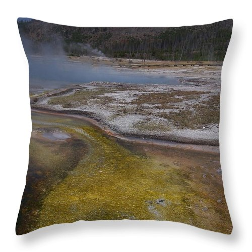 Geyser Throw Pillow featuring the photograph River Of Gold by Gale Cochran-Smith