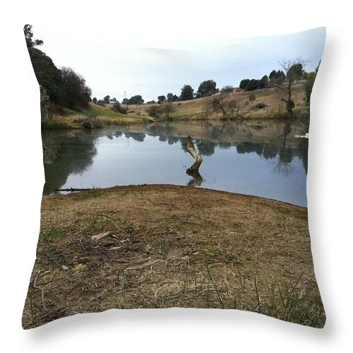 River Throw Pillow featuring the painting River by Richard Benson