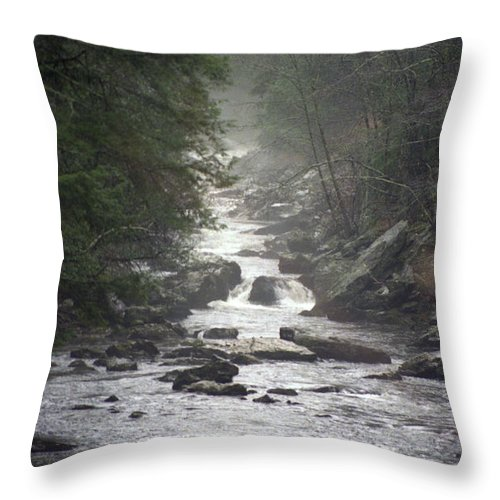 River Throw Pillow featuring the photograph River Run by Richard Rizzo