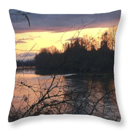 River Throw Pillow featuring the photograph River by Shari Chavira