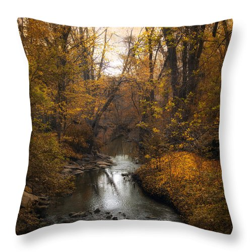 Seasons Throw Pillow featuring the photograph River Views by Jessica Jenney