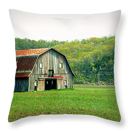 Barn Throw Pillow featuring the photograph Riverbottom Barn In Spring by Cricket Hackmann