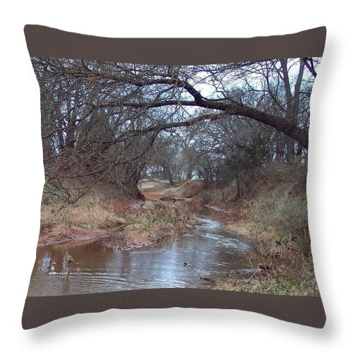 Landscapes Throw Pillow featuring the photograph Rivers Bend by Shari Chavira