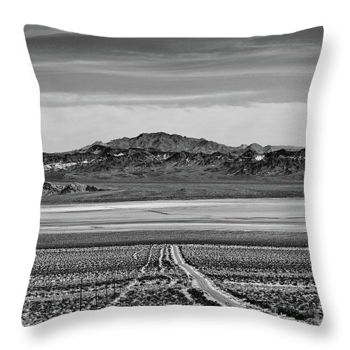 California Throw Pillow featuring the digital art Road To ??? by Stevie Benintende