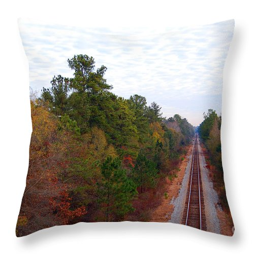 Scenic Tours Throw Pillow featuring the photograph Road To Somewhere by Skip Willits