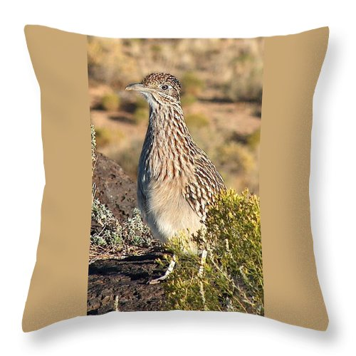 Roadrunner Throw Pillow featuring the photograph Roadrunnner At The Petroglyphs by Tim McCarthy