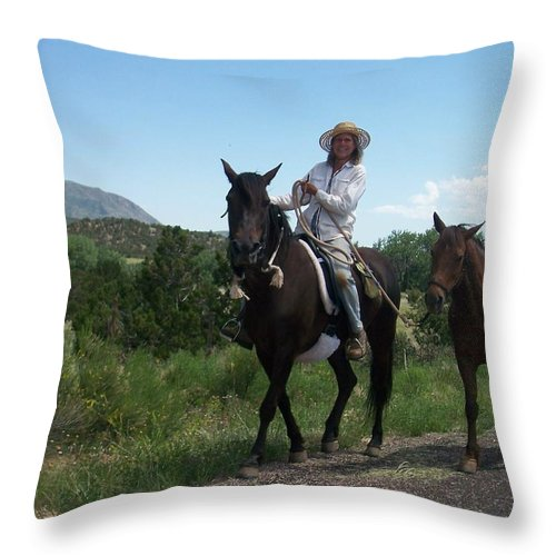 Horses Throw Pillow featuring the photograph Roadside Horses by Anita Burgermeister