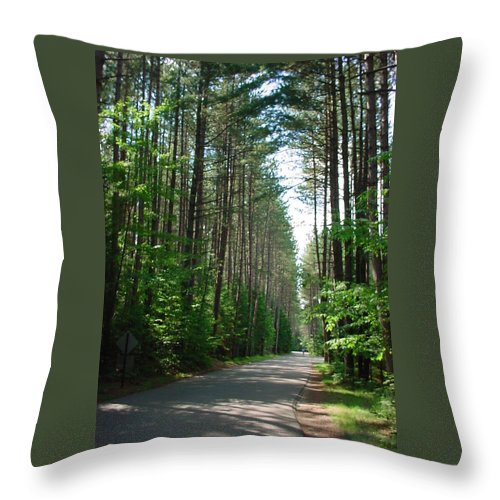 Fish Creek Throw Pillow featuring the photograph Roadway At Fish Creek by Jerrold Carton