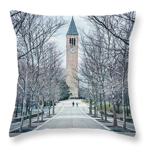 Kremsdorf Throw Pillow featuring the photograph Roam by Evelina Kremsdorf