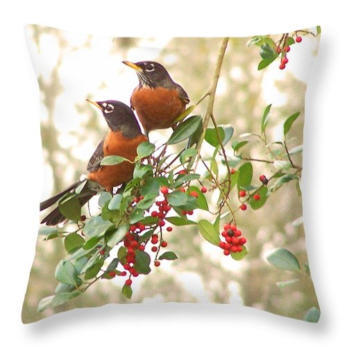 Nature Throw Pillow featuring the photograph Robins In Holly by Peg Urban