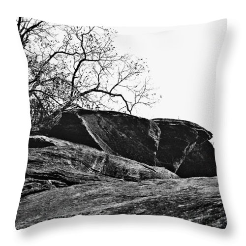 Landscape Throw Pillow featuring the photograph Rock Wave by Steve Karol