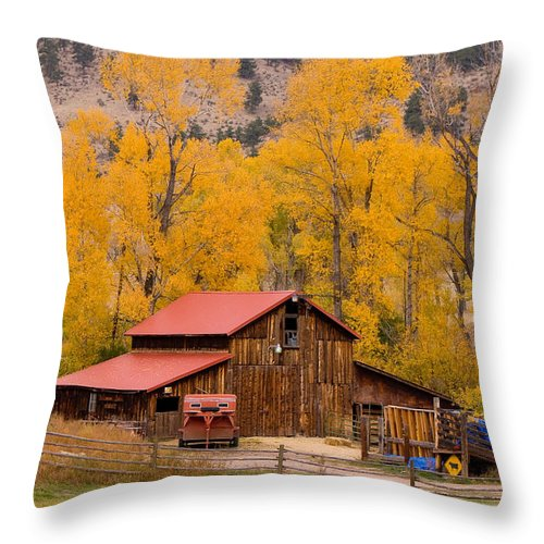 Rustic Throw Pillow featuring the photograph Rocky Mountain Barn Autumn View by James BO Insogna