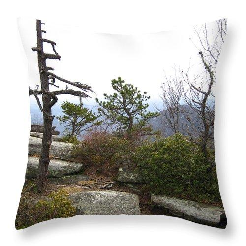 Rocky Mountain Way Throw Pillow featuring the photograph Rocky Mountain by Robert Loe