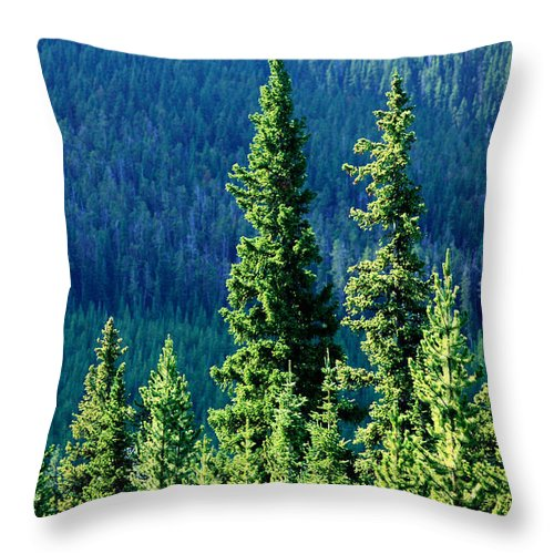 Ponderosa Throw Pillow featuring the photograph Rocky Mountain Skyline by Todd Klassy