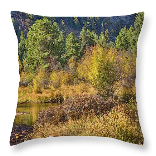 Autumn Throw Pillow featuring the photograph Rocky Mountains Autumn by Arizona Annie