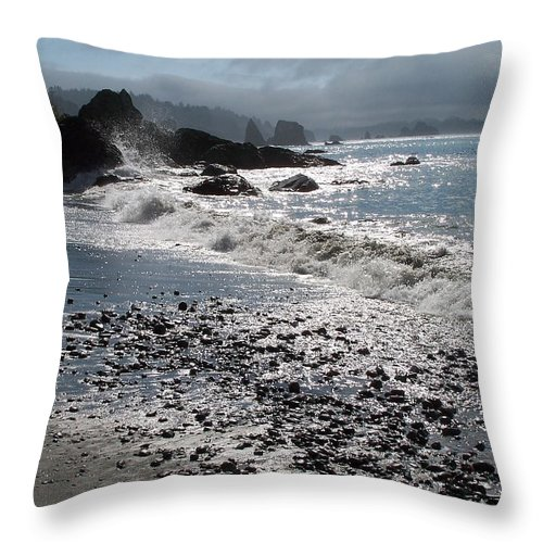 Ocean Throw Pillow featuring the photograph Rocky Shores by Gale Cochran-Smith