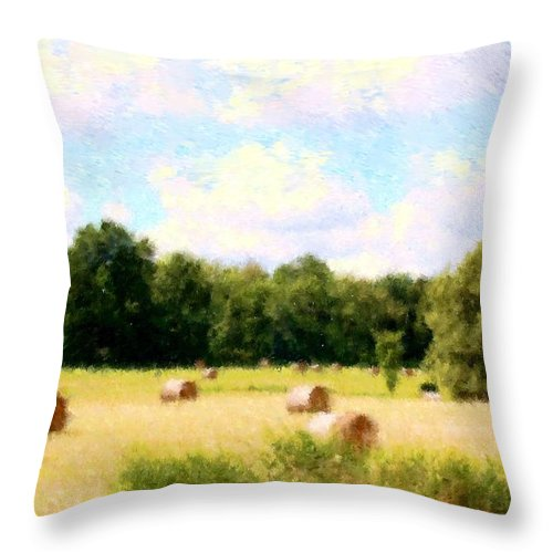 Nature Throw Pillow featuring the photograph Rolling The Hay by David Lane