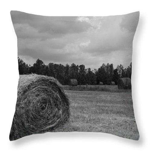 Hay Field Throw Pillow featuring the photograph Rolls Of Hay by Southern Photo