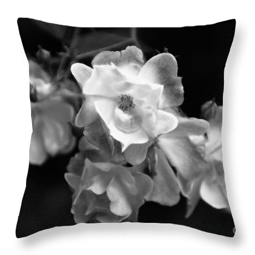 Roses Throw Pillow featuring the photograph Romance Bw by Linda Shafer