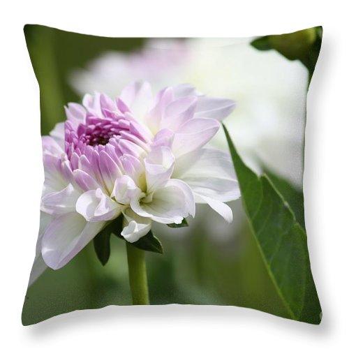 Flower Throw Pillow featuring the photograph Romance In Paris by Carol Groenen