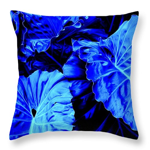 Blue Throw Pillow featuring the photograph Romney Blue by Ian MacDonald