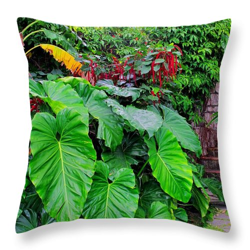 Lush Throw Pillow featuring the photograph Romney Steps by Ian MacDonald