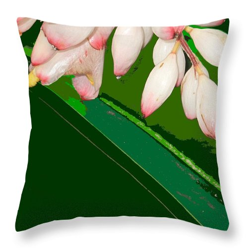 Flowers Throw Pillow featuring the photograph Romney White by Ian MacDonald