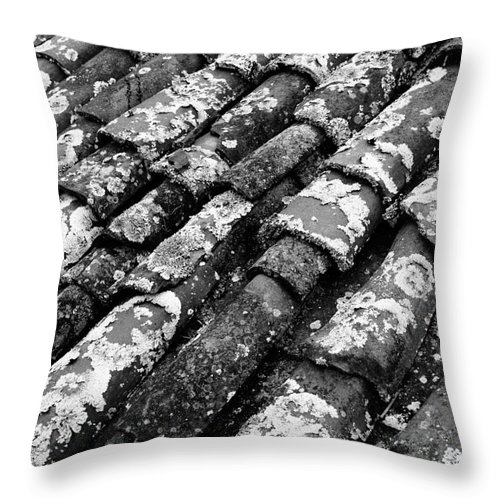 Ceramics Throw Pillow featuring the photograph Roof Tiles by Gaspar Avila