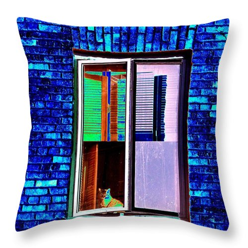 Architecture Throw Pillow featuring the photograph Room With A View by Tim Allen