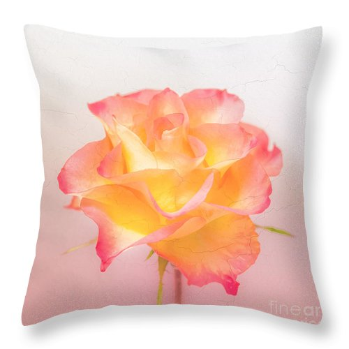 Pink Flowers Throw Pillow featuring the photograph Rosalie by Mona Stut