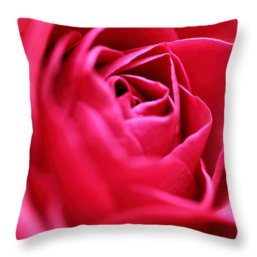 Rose Throw Pillow featuring the photograph Rose by Amanda Barcon