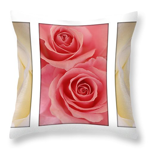 Rose Throw Pillow featuring the photograph Rose Series by Jill Reger