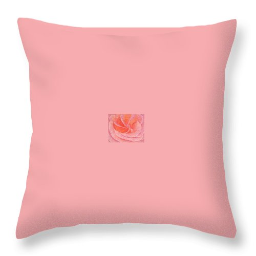Art Print Prints Fine Giclee Canvas Framed Unframed Rose Pink Roses Garden Floral Flower Flowers Throw Pillow featuring the drawing Rose Sprial Pink Fine Art Print Giclee Garden Flower Floral Botanical Love Romance by Baslee Troutman