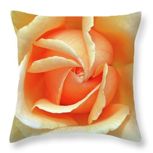 Flower Photos Throw Pillow featuring the photograph Rose Unfolding by Maria Ollman